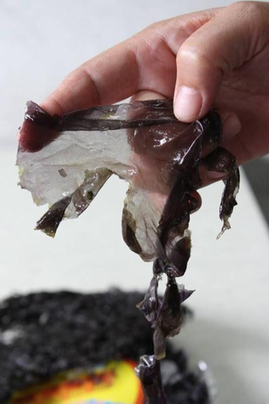 รูปภาพ อันตราย สาหร่ายปลอม จากจีนอีกแล้ว ปนเปื้อนพลาสติก