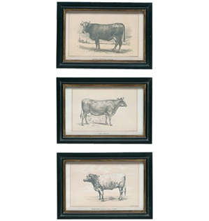 Cow%20Prints[1]