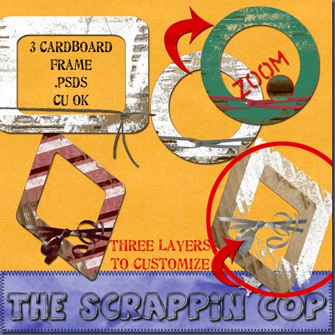 SC_CUCardboardFrames2