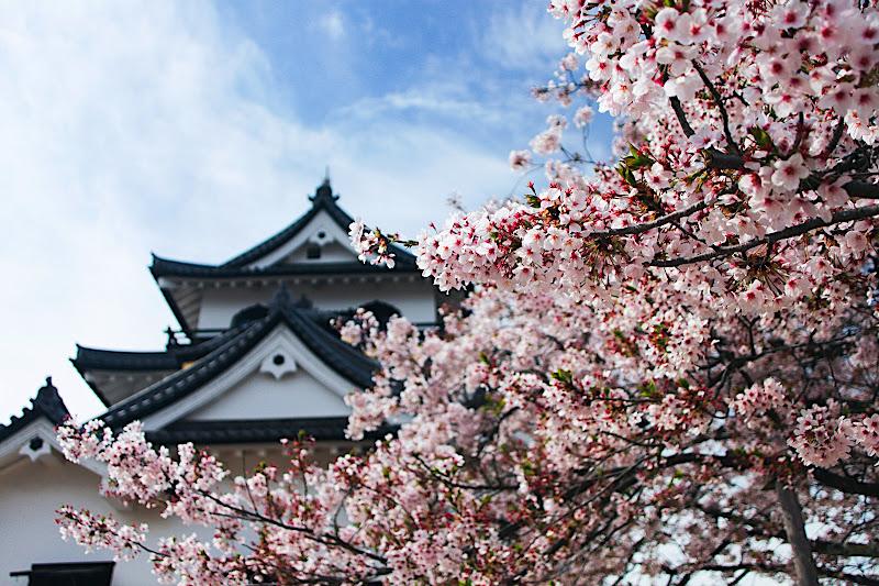 日本旅遊part2