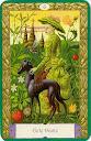 Signification des cartes KIPPER Mystiques 6
