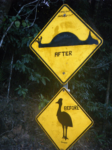 Kiwi warning road sign