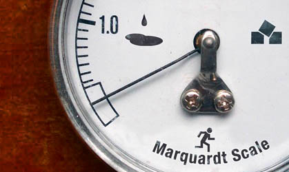 The Marquardt Scale