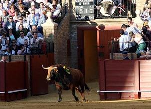 Salida de toriles Sevilla