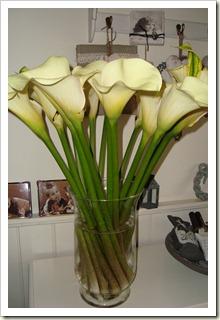 bloemen 002