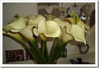 bloemen 001