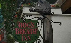 Hog's Breath