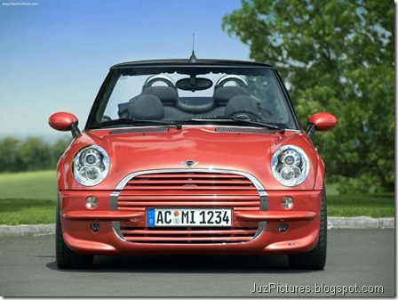 AC Schnitzer Mini Cooper Covertible11