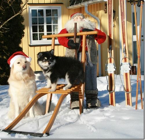 Julebilde 2