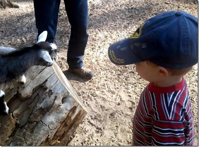 Brennan likes this little fella