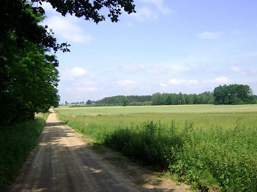 droga do Dalikowa