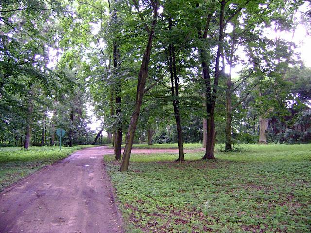 park w Bronowie