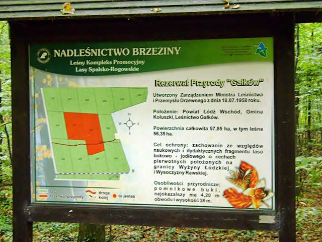 rezerwat przyrody Gałków
