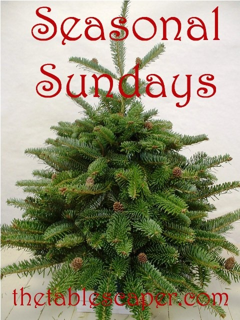Christmas Seasonal Sunday