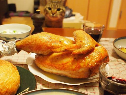 [写真]今年の鶏(とそれを狙うグスタフ)