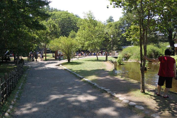 さかな公園の芝生公園の写真