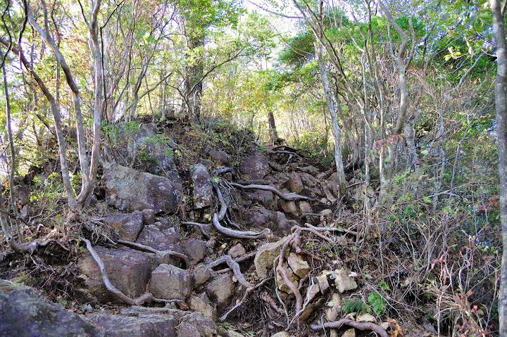 三ツ瀬明神山最後の急登の写真