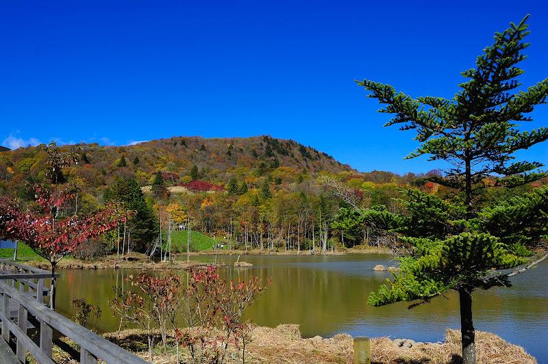 紅葉の矢筈池から茶臼山の景色の写真