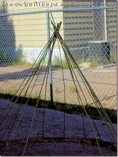 earth day pea bean teepee