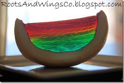 rainbow food b