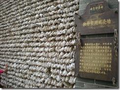 GuangZhou 2009 150