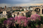 Весна - лучшее время для путешествия по Италии. В цвету даже античные развалины!