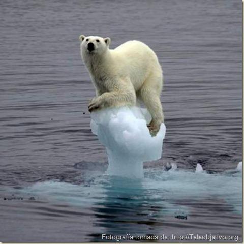 Los glaciares se derriten
