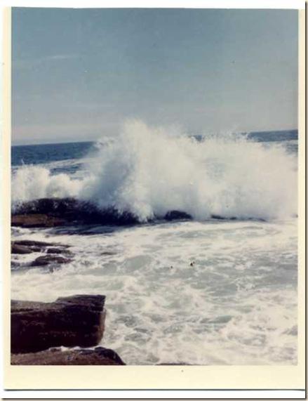 Back shore  1964
