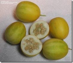 peachvine