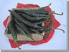Pepper Pasilla Bajo