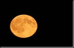 Full_Orange_Moon_by_hpangel