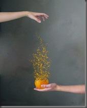 Orange_by_lalyita