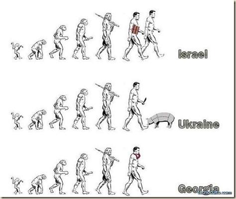 evolucion_5