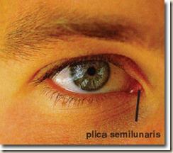 plica_semilunari
