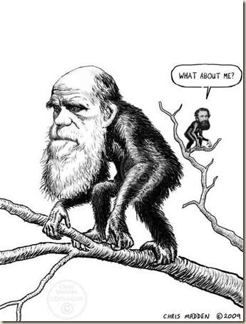russel-wallace-darwin-caricature-cjmadden