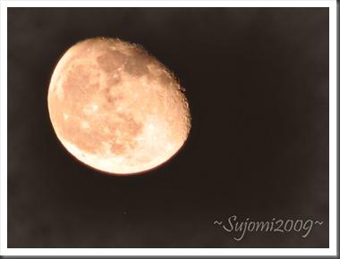 2009 11 05 IMG_1773