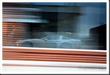 2011 03 19 IMG_0122w
