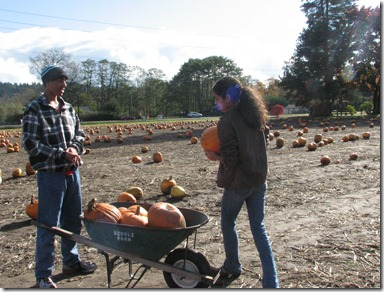 Scholz Pumpkin Farm 080