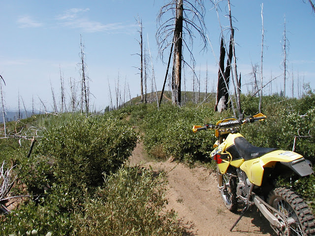 Ukiah Area Ride and Camp! July 9th-11th Suzuki