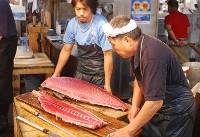 japones e peixe