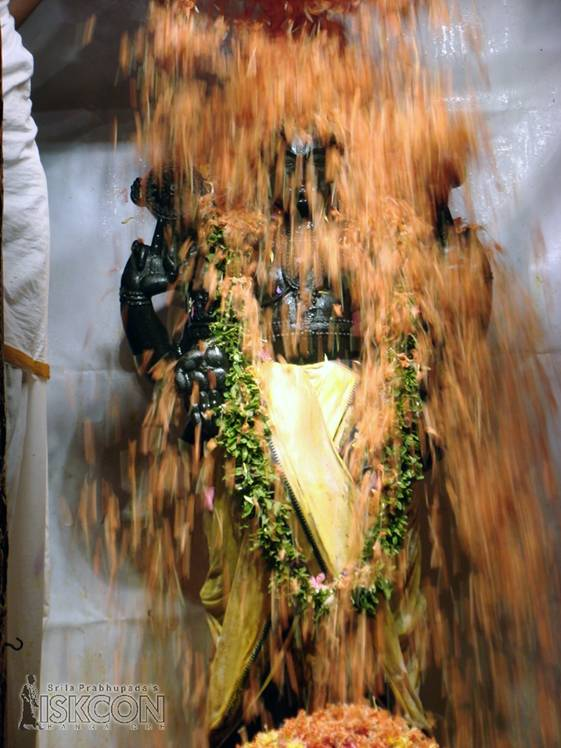 Bathing Lord Balaji with Flowers - Photo 2