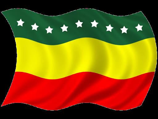 Bandera del Cantón Piñas