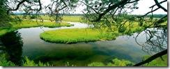 Yamsi river