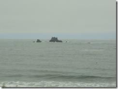 0801-89 CA Coast