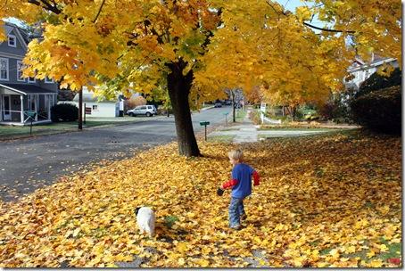 fallwalk