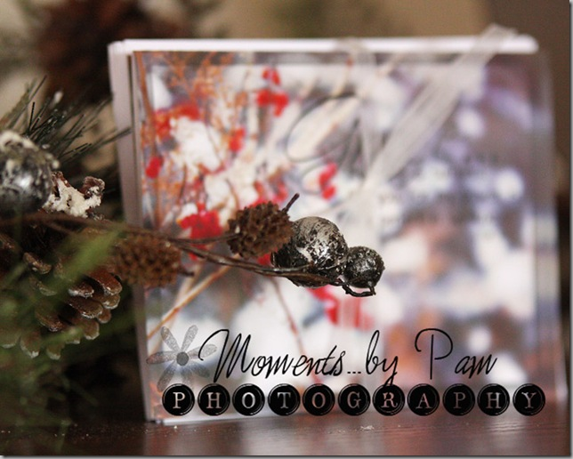 Winter Note cards 009 copy