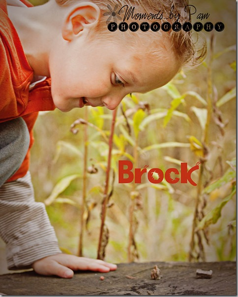 Brock 233 002 copy
