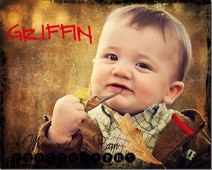 Griffin 084 copy 2