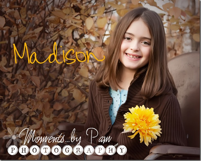 Madison 266 002 copy