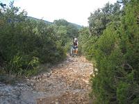 MV2010 (2).jpg Photo